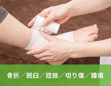 骨折/脱臼/捻挫/切り傷/腫瘍